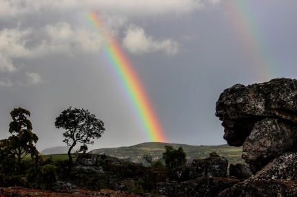 rainbow-509500_960_720
