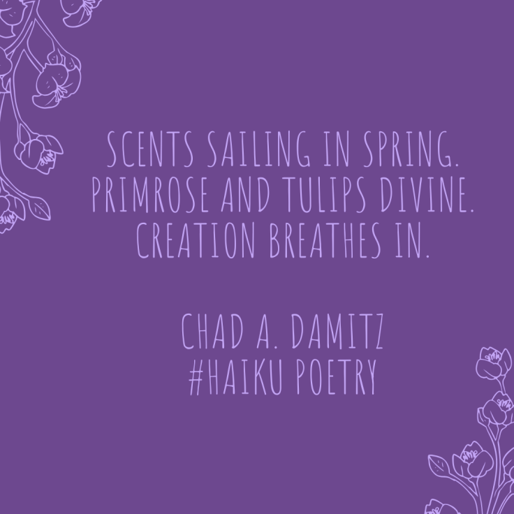 Scents sailing in spring. Primrose and tulips divine. Creation breathes in. Chad A. Damitz #HAiku Poetry